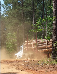 log_truck