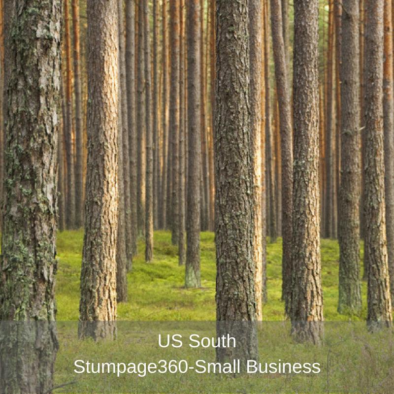 US South- Stumpage360- Small Business