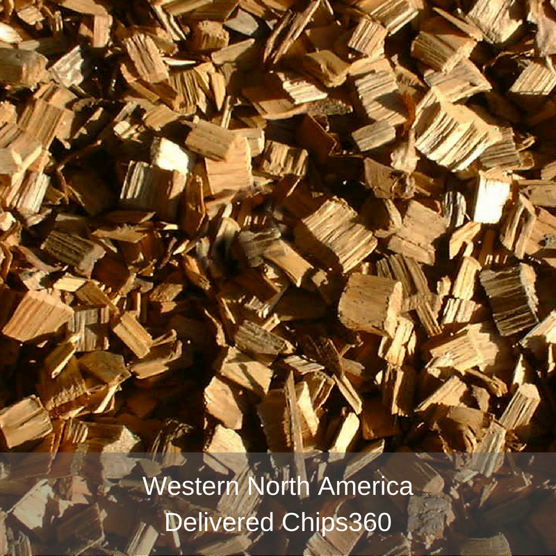 Western North America- Chip360