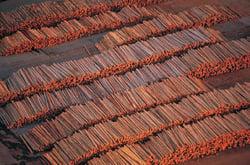 lumberyardlogs.jpg