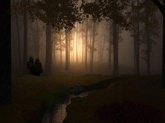 fantasy_forest-1.jpg