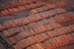 lumberyardlogs