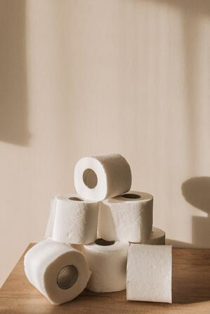 pexels-vlada-karpovich-3958193-toilet paper