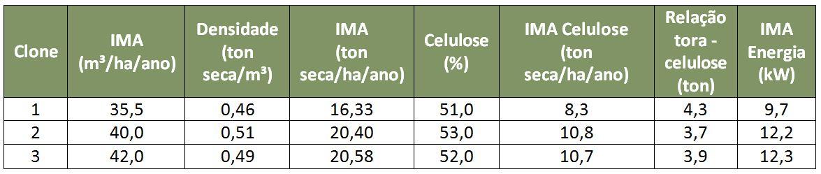 As vantagens do melhoramento genético para plantios de pinus e eucalipto