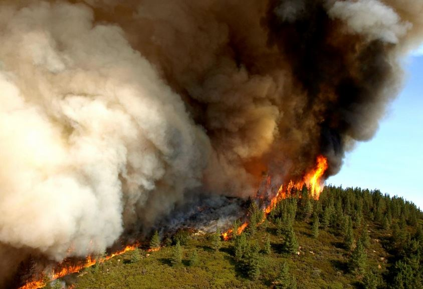 Factions Come Together in new Wildfire Fight for Clean Air