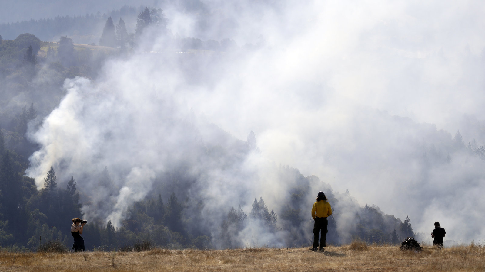 Rep. Westerman Pushes for Needed Reform Amid Catastrophic Wildfires