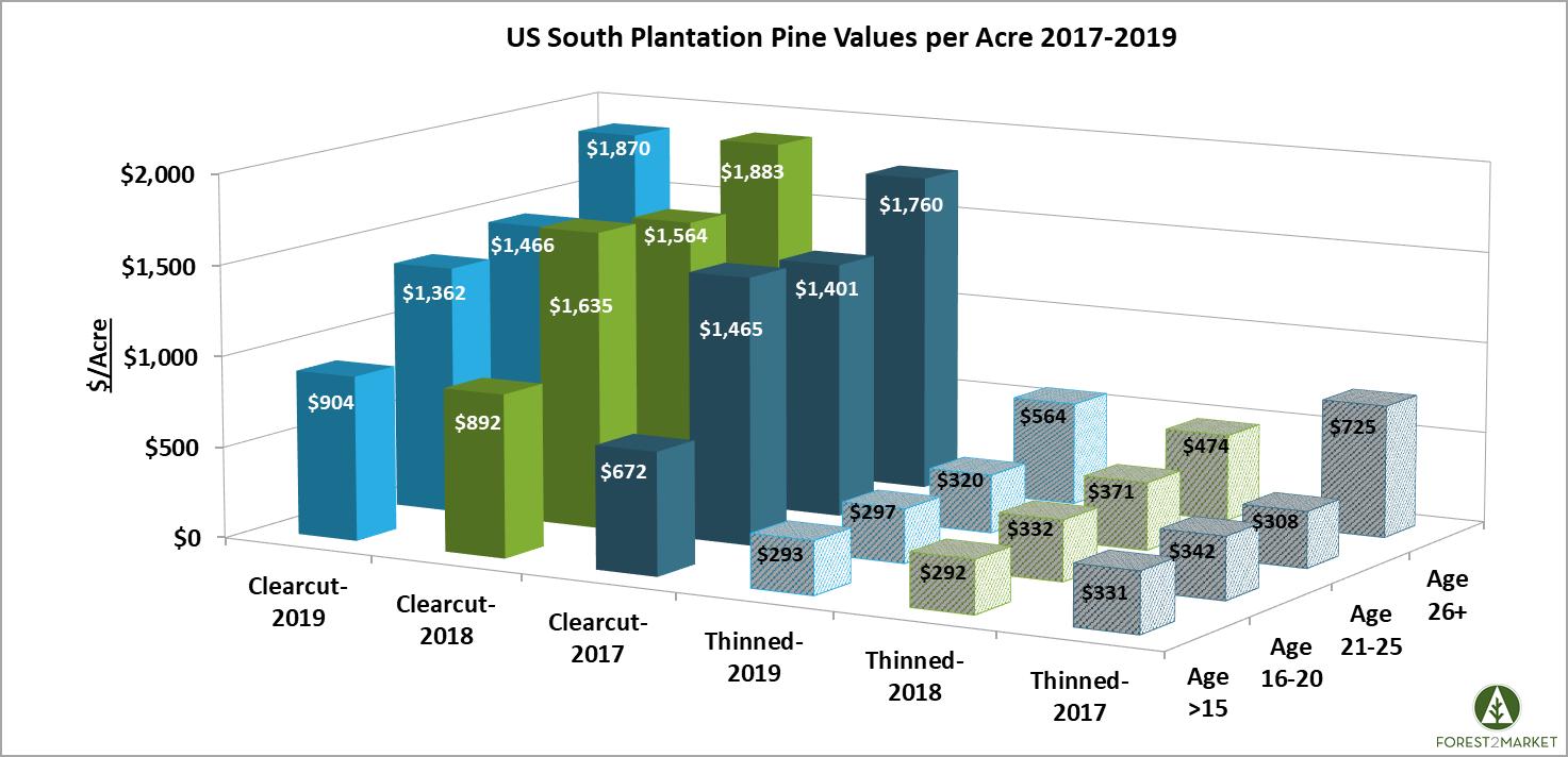 Pine_Plantations