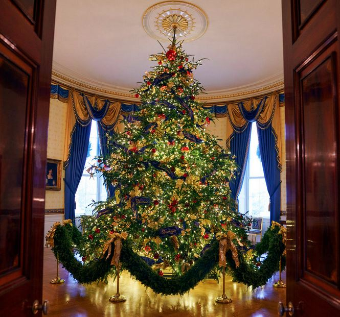 Christmas Tree Growers Must Balance Supply with Consumer Trends